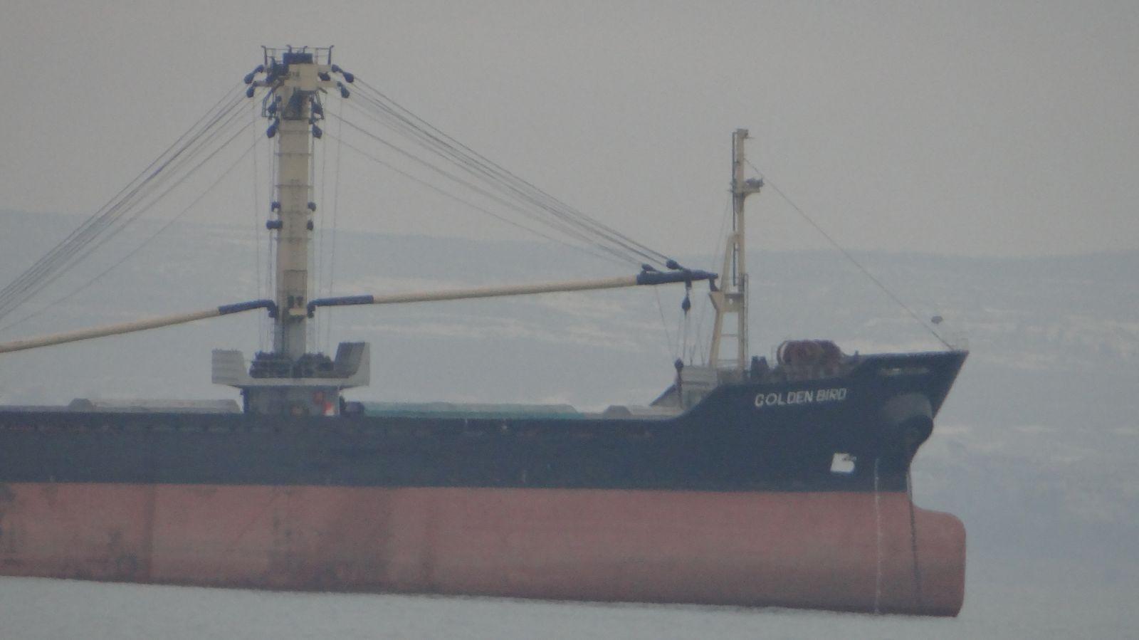 "ПАНОРАМА ОТ БУРГАС: Бълкер Golden Bird, танкер Azov Mariner, влекач Golden Blessed и кораб-ресторант ""Мирела""! (ОБНОВЕНА)"
