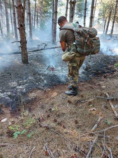 Военнослужещи от 31-и батальон на 2-а Тунджанска механизирана бригада на СВ помагат за потушаването на пожара в Свиленградско (ГОЛЯМА ПОЖАРНА ГАЛЕРИЯ)